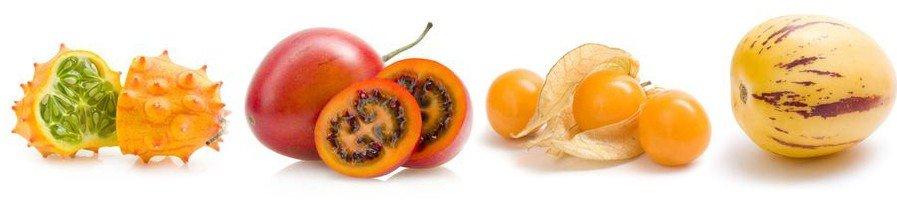 Семена редких растений