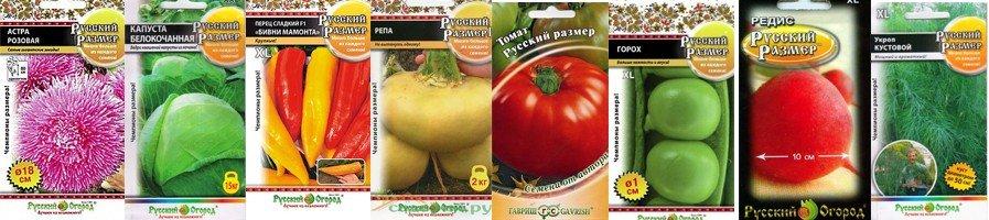 Семена Русский Размер, гиганты