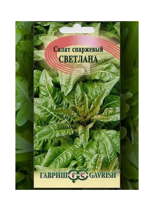 Салат спаржевый выращивание из семян 3