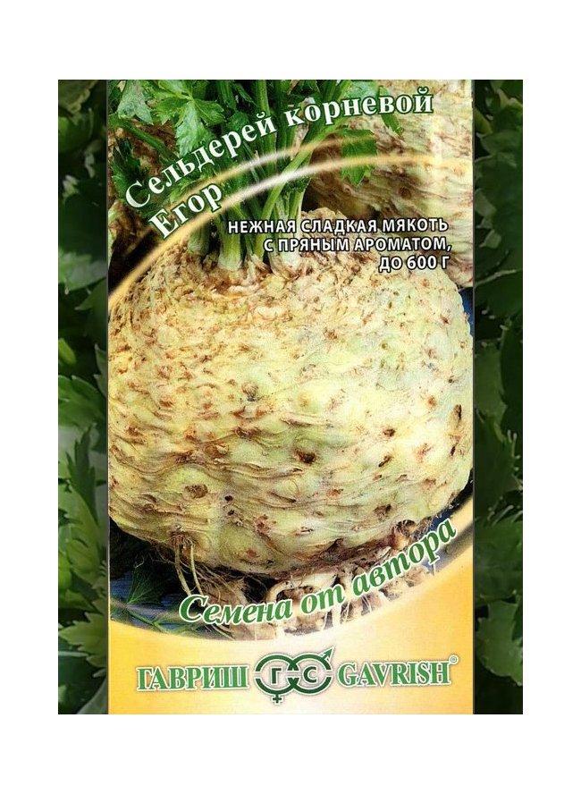 Выращивание корневого сельдерея на семена 396