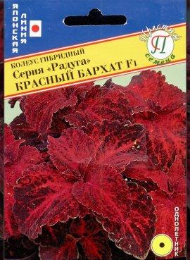 Колеус Радуга Красный...